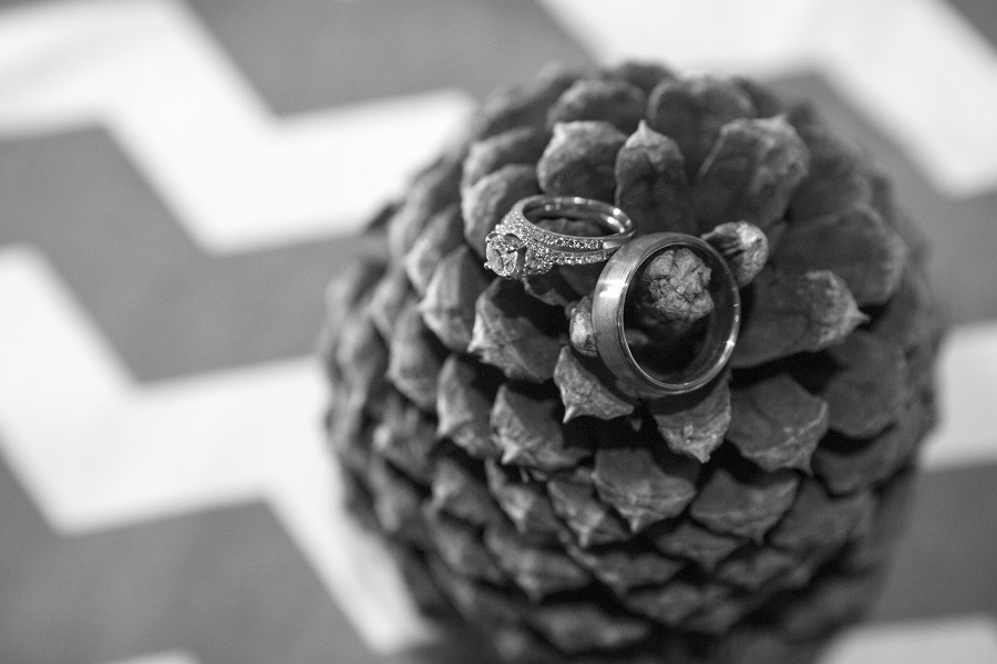 Wedding rings on pinecone, David Lynn Photography